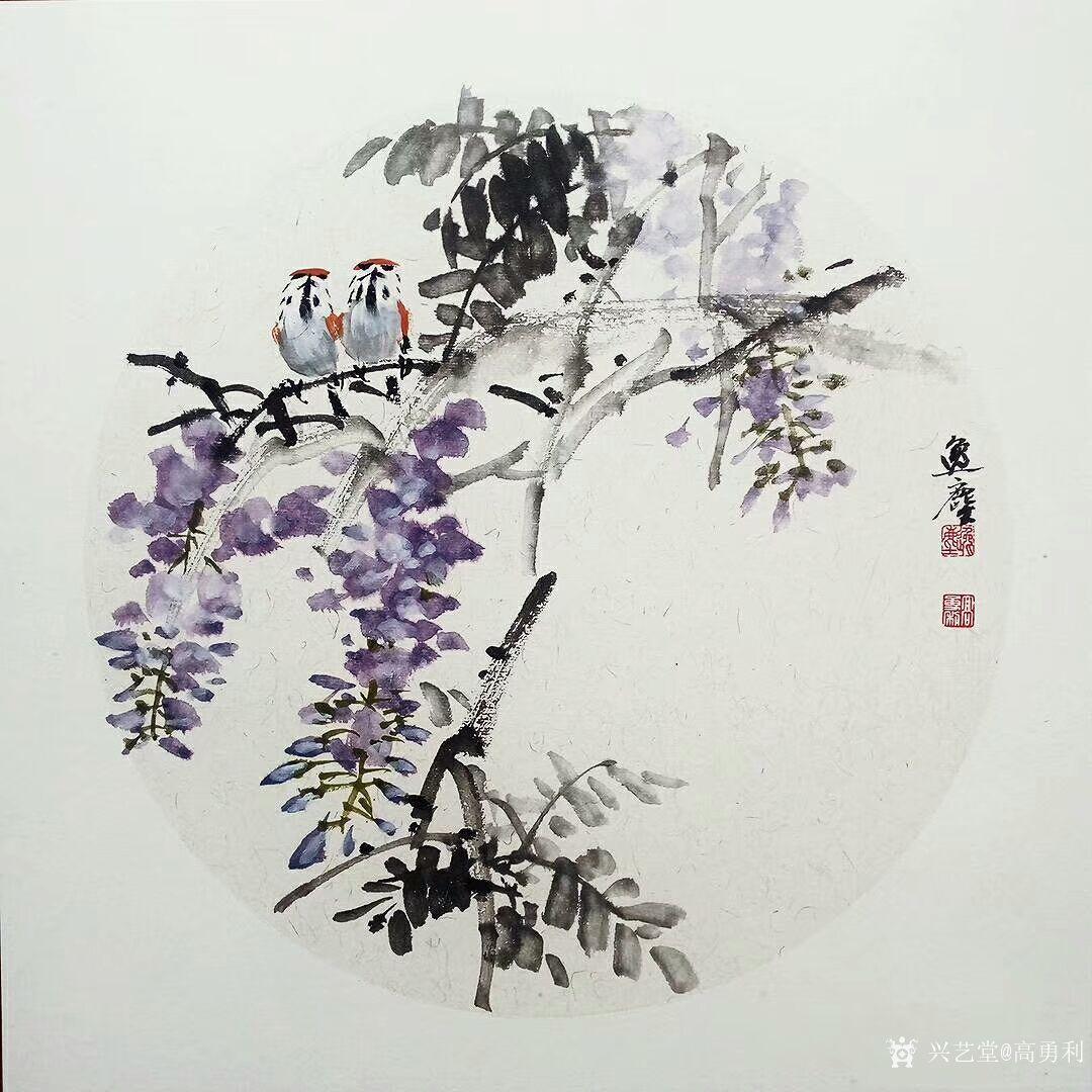 高勇利日志:国画花鸟小品一组《鸢尾》《紫藤