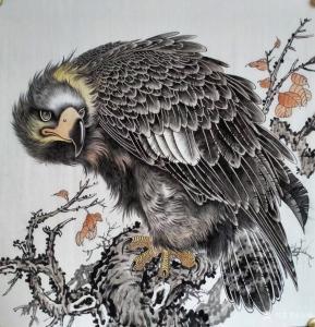 艺术品图片:艺术家谷风国画作品《鹰-凝视》价格800.00 元