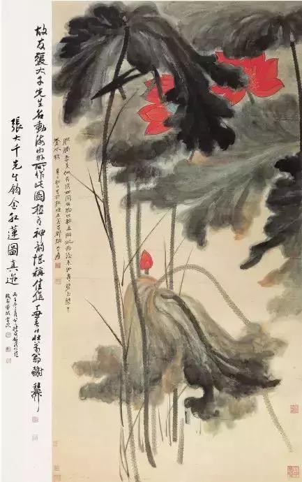 国画大师张大千 荷花作品欣赏