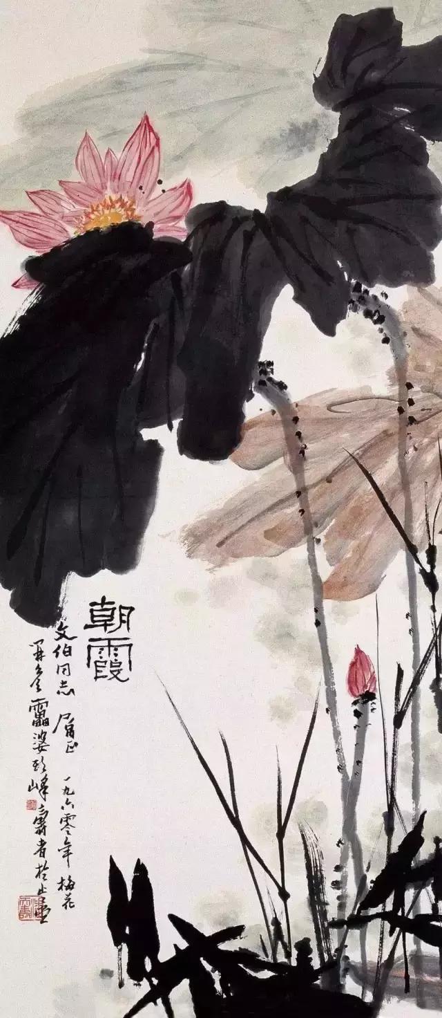 国画大师潘天寿 荷花作品欣赏