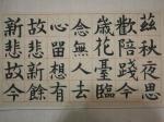 张红亮日志-我很困惑,古人写这种楷书是坐着写的,还是站着写的,若是站着写【图1】