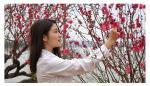 叶仲桥日志-昨天朋友发了这张梅花美人上来、忽然想画梅花的冲动、是不是很美【图1】