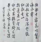 张海龙日志-书法作品     张海龙【图2】
