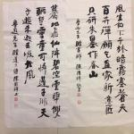 陈国祥日志-我的鲁迅诗选书法作品、共48首选其八!陈国祥书法作品【图3】