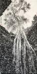 马培童日志-十七,我走向焦墨山水的成功之路   焦墨山水的,笔 墨 点【图4】
