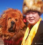 刘明礼生活-我与犬王藏獒的合影【图4】