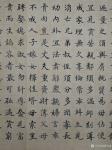 胡宝成日志-刚写好的小楷《朱子家训》共524字,尺寸180*48㎝喜欢的【图3】