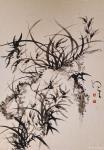周牧天日志-周牧天国画兰花,20幅【图1】