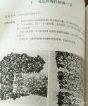 刘永铎藏宝-《热爱艺术》艺术可能爱上了教育 教育的前行,充满希望; 【图3】