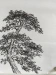 吕双日志-国画如何画树杆?树枝的趋向和疏密,组合起来才算是一颗完整的大【图3】