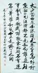 刘胜利日志-行书书法录毛主席诗词《清平乐.六盘山》和诗歌《春游芳草地,夏【图1】