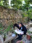 安士胜藏宝-天津市西青区文化馆野外采风;  从一片叶子开始,继续做着并【图3】