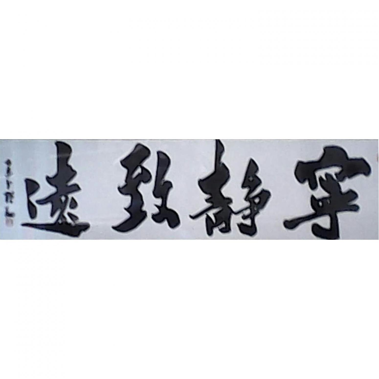 张翔书法作品《【宁静致远】作者张翔》