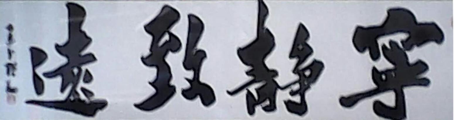 张翔书法作品《【宁静致远】作者张翔》【图0】