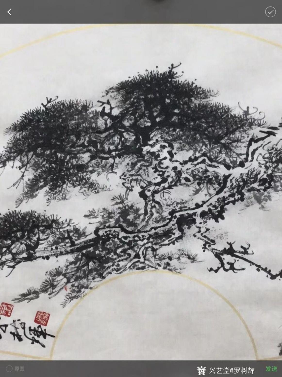 罗树辉国画作品《松树-蛟龙出海》【图1】