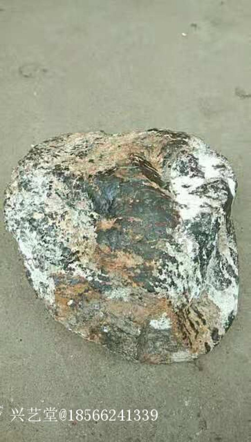 18566241339文玩杂项作品《石铁陨石》【图5】