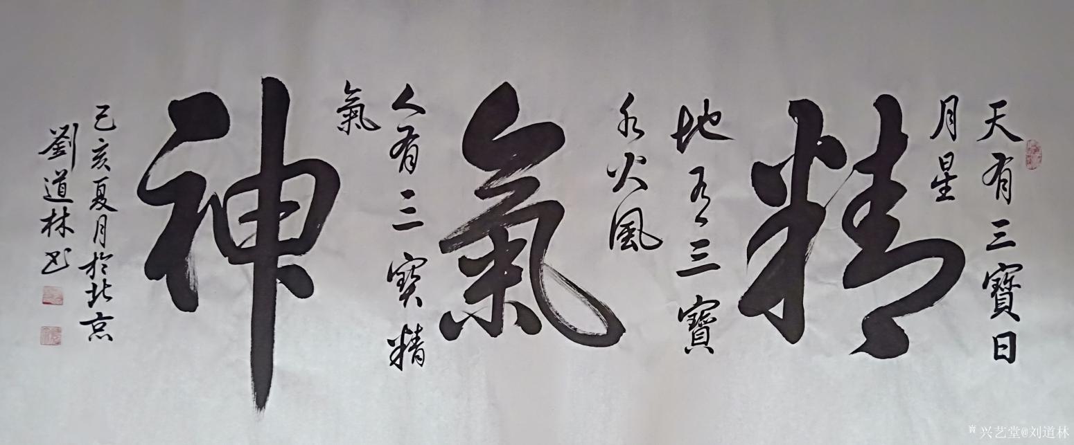 刘道林书法作品《精气神》