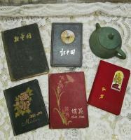 艺术家荆古轩收藏:五、六、七十年代的日记。我的红色收藏之四。日记是一个人的心灵【图3】