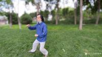 艺术家杨牧青日记:杨牧青评议:传统武术与传统书画艺术的态象 最近武术界的一个【图0】