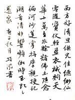 艺术家陈培泼日记:学书系列:录《裴将军诗》,《望江南·西方好》; 《裴将军诗【图4】