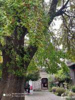 艺术家徐家康收藏:扬州八怪纪念馆之所以选择位于驼铃巷的西方寺,只因后院是金农晚【图2】