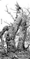 艺术家马培童收藏:对话苏轼——潘玮萱评马培童(24)   北宋中期,出现了一【图2】