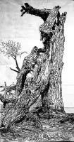 艺术家马培童收藏:对话苏轼——潘玮萱评马培童(24)   北宋中期,出现了一【图4】
