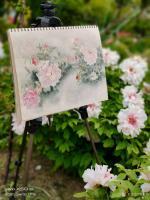 艺术家罗虹明生活:方彩植物园真的很美,每个角落都是一幅画。春日,携友踏青写生。【图0】