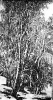 """艺术家马培童日记:以写论道(82)马培童焦墨画感悟笔记;   """"写""""是一个文【图2】"""