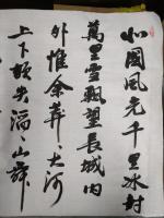 艺术家陈文斌日记:书法家陈文斌书行书录《沁园春.雪》辛丑夏月书; 北国风光,【图0】