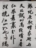 艺术家陈文斌日记:书法家陈文斌书行书录《沁园春.雪》辛丑夏月书; 北国风光,【图1】