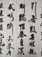 艺术家陈文斌日记:书法家陈文斌书行书录《沁园春.雪》辛丑夏月书; 北国风光,【图2】