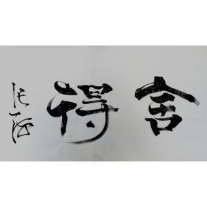 史永强书法作品《【舍得】作者史永强》价格432.00元