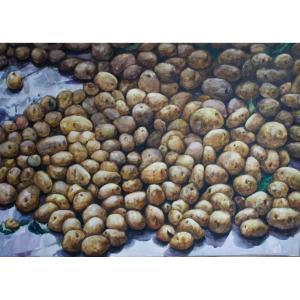 孙威国画作品《【一地土豆】作者孙威》价格3600.00元