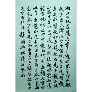 江少文书法作品《【登五龙山记】作者江少文》价格4320.00元