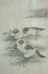 石海博国画作品《猫咪戏蚂蚱》价格400.00元