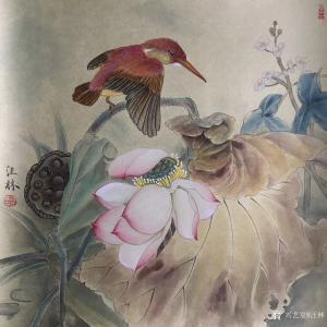 汪林国画作品《翠鸟荷花图》价格600.00元