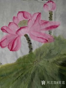 夏莲国画作品《荷气生财》价格200.00元