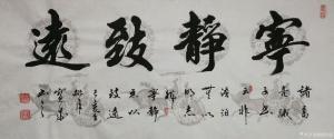 胡宝成书法作品《宁静致远》价格500.00元