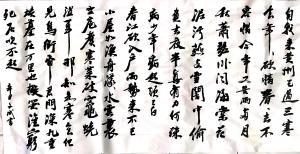 陈文斌书法作品-《黄州寒食诗二首》
