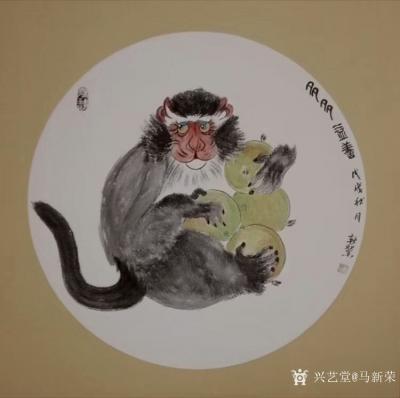 马新荣日记-《多多益善》,国画新作,猴子护桃图,尺寸68x68厘米,【图1】