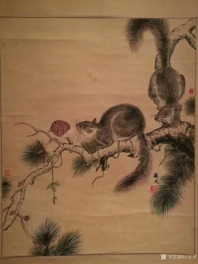 王征明日记-国画松鼠,尺寸四尺斗方68x68里米,朋友们都见多了我画的水意画,国画比较少作,【图1】