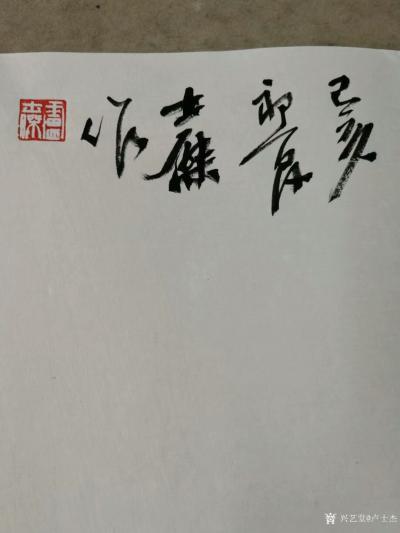 """卢士杰日记-创作一副六尺作品""""花开富贵"""",从八点准备,九点,十点,十一点,十二点,一点,一点【图6】"""