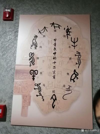 杨牧青日记-观图我见之惊讶不已,这是跨越时空的甲骨文图片设计,这也是五千年后(公元7019年【图1】