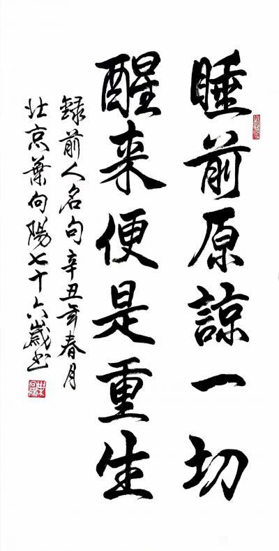 叶向阳日记-行书书法作品《睡前原谅一切醒来便是重生》,叶向阳七十六岁书於北京; 《睡前原谅【图1】