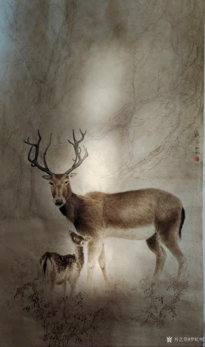 罗虹明日记-国画动物画《鹿》,早晨醒来,一米阳光正好照在我的画上,还蛮有感觉的。【图1】