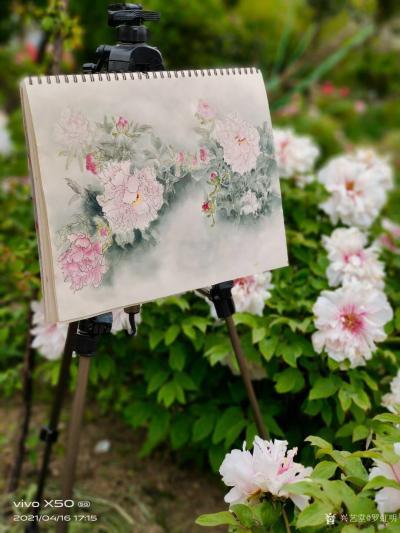 罗虹明生活-方彩植物园真的很美,每个角落都是一幅画。春日,携友踏青写生。 寻芳泗水滨,无边【图1】