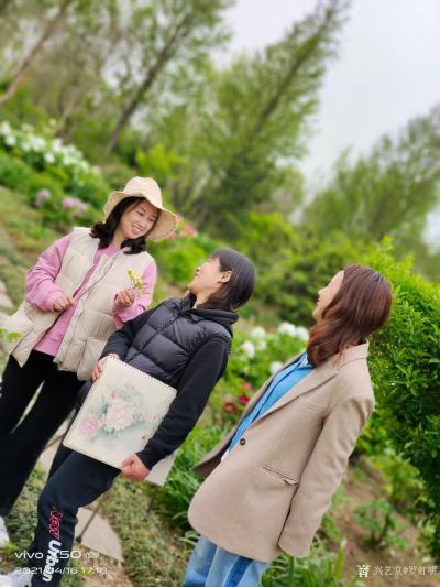罗虹明生活-方彩植物园真的很美,每个角落都是一幅画。春日,携友踏青写生。 寻芳泗水滨,无边【图5】