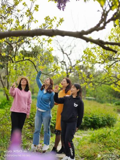 罗虹明生活-方彩植物园真的很美,每个角落都是一幅画。春日,携友踏青写生。 寻芳泗水滨,无边【图6】