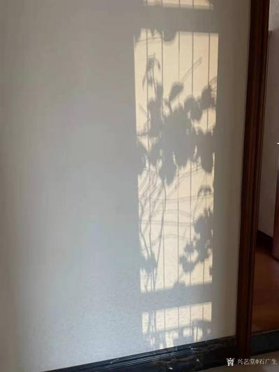 石广生日记-阳光国画:也许是天公感觉我墙壁太空,缺乏装饰,每天都让阳光给我送来一幅画,并直接【图1】